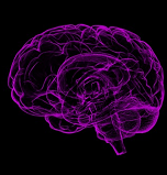 global-alzheimers-disease-ad-market-to-2024