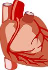 Structural Heart Market