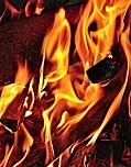 Flame Retardant Market
