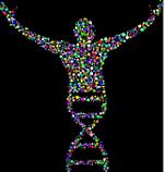 Oncology Molecular Diagnostic Market