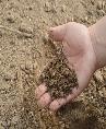 Fertilizer additives Market Size
