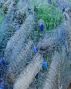 Agro Textiles market size