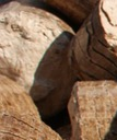 wood pellet market size